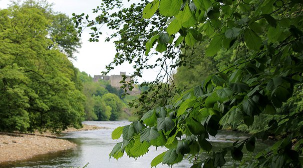 The River Swale walk ends with spectacular views to Richmond Castle
